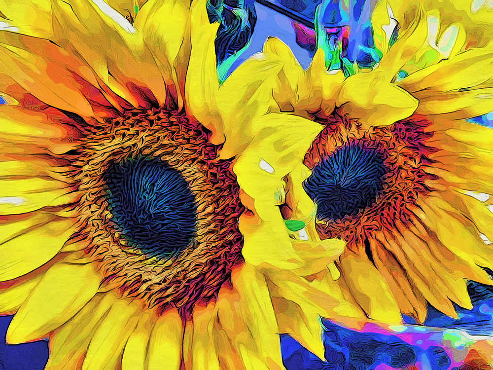 SUNFLOWERS_5154-MH-SMP